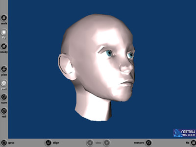 VRML модель головы ребёнка
